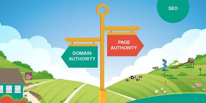 Domain Authority Nedir ve Nasıl Yükselir?